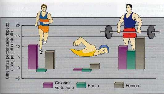 Osteoporosi e sport.jpg